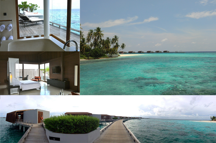 stay maldives 2