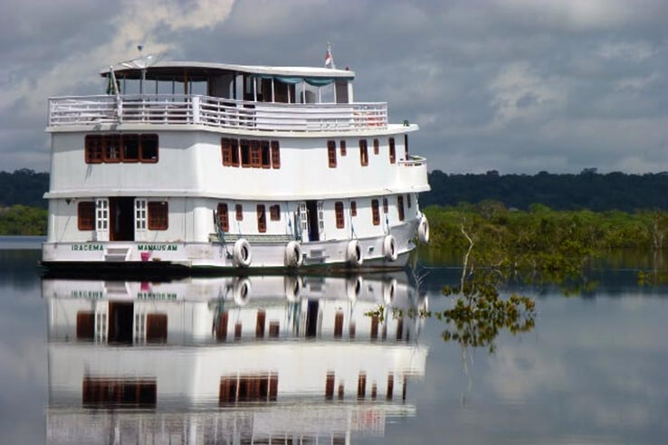 from rainforestcruises.com